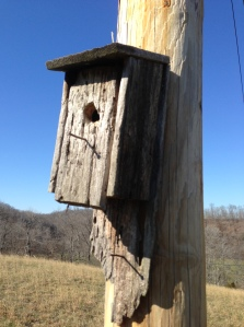 Handmade birdhouse made by Mr. Wilson Fly sold at the Fly General Store